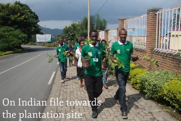ULK_Gisenyi_On_Indian_file_towards_the_plantation_site.jpg